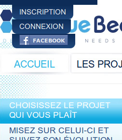 http_www.bluebees.fr_